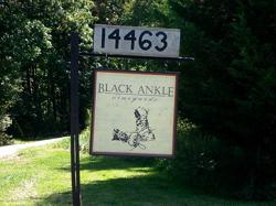 Black Ankle Vineyards