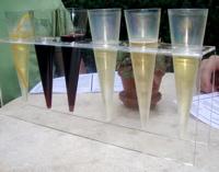 Kluge Estate Winery and Vineyard Tasting Flight