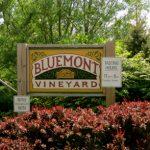 Bluemont Vineyard Entrance